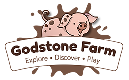 Global Radio- Godstone Farm & Playbarn
